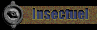 Insectuel